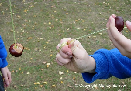 Playing conkers