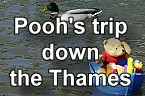 Pooh down the River Thames