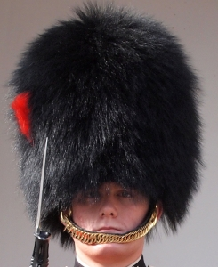 Palace Guards - The Foot Guard Uniform